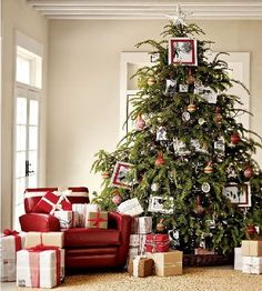 Designer Decorated Christmas Trees   Christmas tree decorating ideas pictures to help you decorate