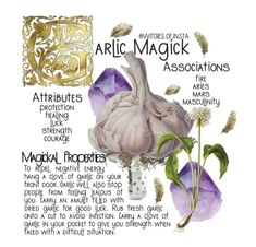 Witchcraft Spell Books, Wiccan Spell Book, Witch Spell, Wiccan Spells, Magic Spells, Magick, Plant Magic, Magic Herbs, Herbal Magic