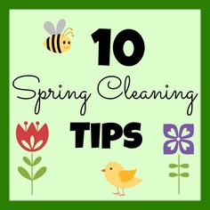 10 Tips for Organizing and Cleaning Your Home I girlinthegarage.net