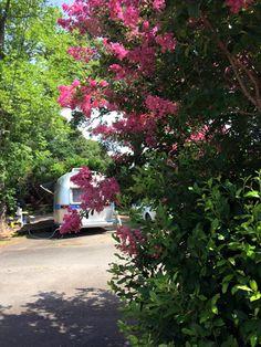 Crossroads Travel Park Perry GA Passport America Campgrounds