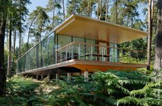 The vegetation is mirrored within the glass walls on both sides, consequently camouflaging the house totally. Description from interior-tip.com. I searched for this on bing.com/images