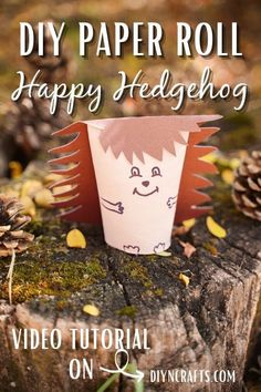 Toilet Paper Roll Crafts, Easy Paper Crafts, Diy Paper, Crafts To Make, Crafts For Kids, Happy Hedgehog, Hedgehog Craft, Cute Hedgehog, Octopus Crafts