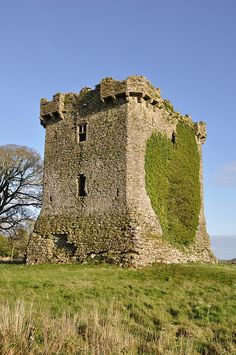 Shrule Castle, County Mayo, Ireland.  The castle was built in c.1238, near the Black River at the County Mayo and County Galway border by the de Burgh family.