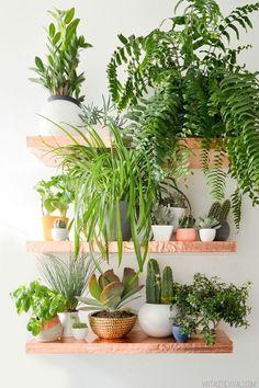 Faux Copper Plant Shelves