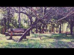 EU VISITEI : Parque Anhanguera - YouTube