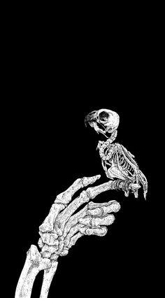 Welcome to my Darkness. Skull Wallpaper, Dark Wallpaper, Gothic Wallpaper, Black Aesthetic Wallpaper, Aesthetic Wallpapers, Fullhd Wallpapers, Skeleton Art, Skeleton Watches, Arte Obscura