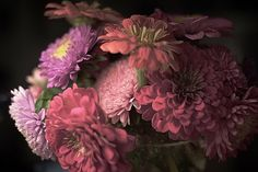 Michael Kindermann Photography | PRINTS Switzerland, Floral Wreath, Wreaths, In This Moment, Plants, Photography, Decor, Photo Art, Floral Crown