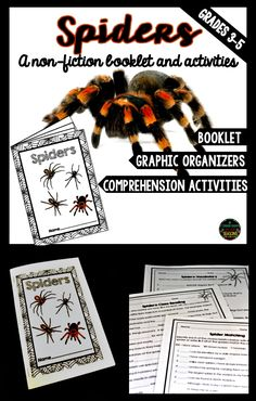 """A fun way to practice reading comprehension! Students will have their own """"Spiders"""" booklet to keep. Learn all about spiders with this booklet, graphic organizers and lots of comprehension activities."""