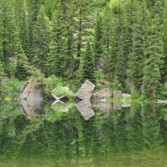 Reflection of forest and rocks in Mirror Lake in Colorado. Photo by @ladzinski