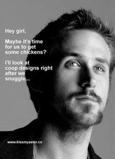 For Leena and her chickens Hey Girl...Ryan Gosling
