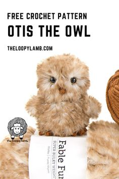 Adorable Crochet Owl Free Pattern from The Loopy Lamb Crochet Owls, Crochet Motifs, Crochet Amigurumi Free Patterns, Crochet Animal Patterns, Stuffed Animal Patterns, Crochet Animals, Free Crochet, Crochet Hearts, Crochet Food