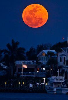 Super Perigree Moon over Venice, Florida (by Daniel G McVey)