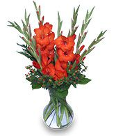 SUMMER SANGRIA Any Occasion Flowers