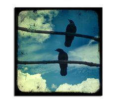 Nature Wall Art Crows Image Animals Blue Sky TTV by gothicrow, $16.00