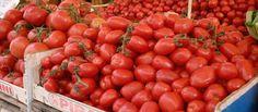 Så blir vi lurade om tomater - Kit.se