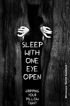 """""""Hush little baby, don't say a word. And nevermind that voice you heard....It's just the beasts under your bed... in your closet...in your head."""""""