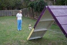 Instructions to make A-Frame for agility!