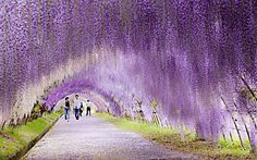 Confira 10 dos lugares mais bonitos do mundo