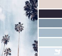 Tropical Tones | design seeds | Bloglovin'