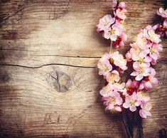 Photo about Spring Blossom over wooden background. Image of petal, bloom, nature - 37213478