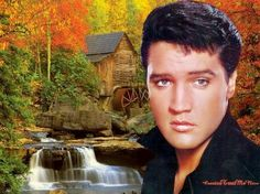 Elvis and Pricilla Presley - Henk gerrits - Picasa Webalbums
