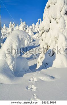 Landscape on snowy mountain on a sunny cold winter day on tourist resort in Lapland Finland.Trees are covered by heavy snow.  - stock photo