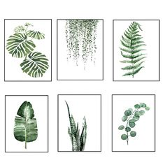 2.69AUD - Modern Nordic Green Plant Leaf Canvas Art Poster Print Wall Picture Home Decor #ebay #Home & Garden