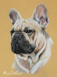 Ivan - Bouledogue français Pastel Art, French Bulldog, Paintings, Dogs, Animals, French Bulldog Cost, Animales, Paint, Animaux