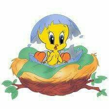 Great free clipart, png, silhouette, coloring pages and drawings that you can use everywhere. Tweety Bird Quotes, Little Yellow Bird, Looney Toons, Baby Cartoon, Cartoon Clip, Bird Clipart, Disney Images, Baby Images, Animales