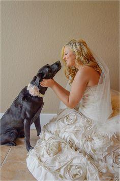 Bride kissing her dog ~ Photo: Jenna Christine Photography