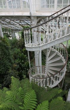 Spiral Staircase: The Temperate House by curry15, via Flickr