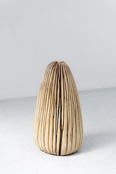 David Nash – Linden Wood – Galerie Lelong Paris