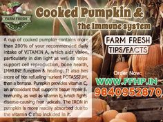 Cooked Pumpkin and The Immune System!