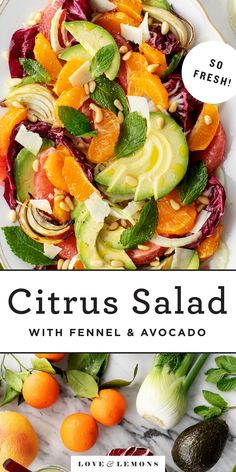 Citrus Salad with Fennel & Avocado Recipe - Love and Lemons - This gorgeous citrus salad is a simple, refreshing side dish! Avocado, fennel, and fresh mint perfe - Quinoa, Vegetarian Recipes, Healthy Recipes, Side Salad Recipes, Healthy Salads, Healthy Food, For Love And Lemons, The Best, Side Dishes