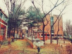 In front of my school