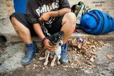 Moradores de rua e seus fiéis companheiros em comovente ensaio | #Animais, #Arte, #CatracaLivre, #Ensaio, #Estimação, #Fotografia, #MoradoresDeRua