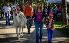 Familienfreundliche Ausflüge und Freizeitideen in Niederösterreich Freundlich, Goats, Animals, Roller Coaster, Road Trip Destinations, Adventure, Hiking, Tips, Animales