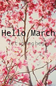 TLet Spring Begin, Hello March spring flowers march hello march march quotes