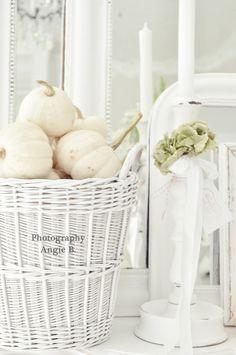 white punkins in basket