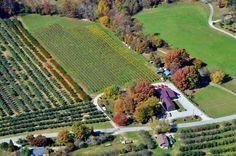 St. Paul Mountain Vineyard, Hendersonville, NC