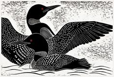 Two Loons (ll) - hand-pulled relief print - Dona Reed