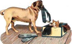 Oblaten Glanzbild scrap die cut chromo Katze cat  Hund dog Mops Handschuh puppy