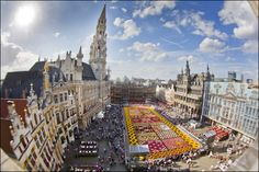 Save the date! The Brussels Flower Carpet will be held from the 13th to the 15th August 2016! http://www.flowercarpet.be/en