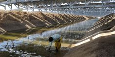 India's Ingenious Solar Canals  Saving water while producing electricity.