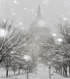 ss-100206-snow-11.jpg 1,332×1,500 pixels
