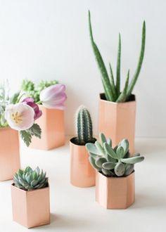 Déco avec des petits cactus