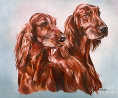 Irish Setters For Sale | Irish Setters Painting - Irish Setters Fine Art Print