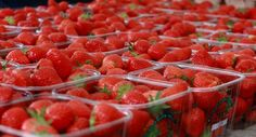 Sea of Strawberries Flower Market, Farmers Market, Street Food, Strawberries, Festivals, Food Photography, Beverages, Favorite Recipes, Events