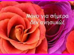 ΟΙ ΑΡΧΕΣ ΤΟΥ ΡΕΪΚΙ - KOAN HolistiCenter Zen Meditation, Peace, Rose, Flowers, Plants, Pink, Plant, Roses, Royal Icing Flowers