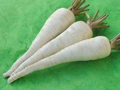 Bohatá úroda kvalitného petržlenu: Takto sa z nej budete tešiť aj vy Carrots, Flora, Gardening, Fruit, Vegetables, Belle, Garten, The Fruit, Carrot